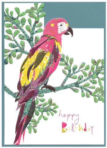 happy birthday, parrot