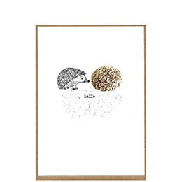 hedgehog & snowball